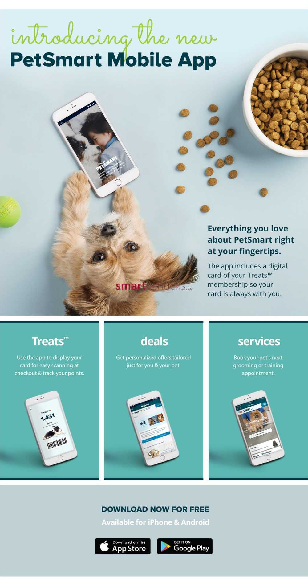 PetSmart Flyer March 4 to April 7