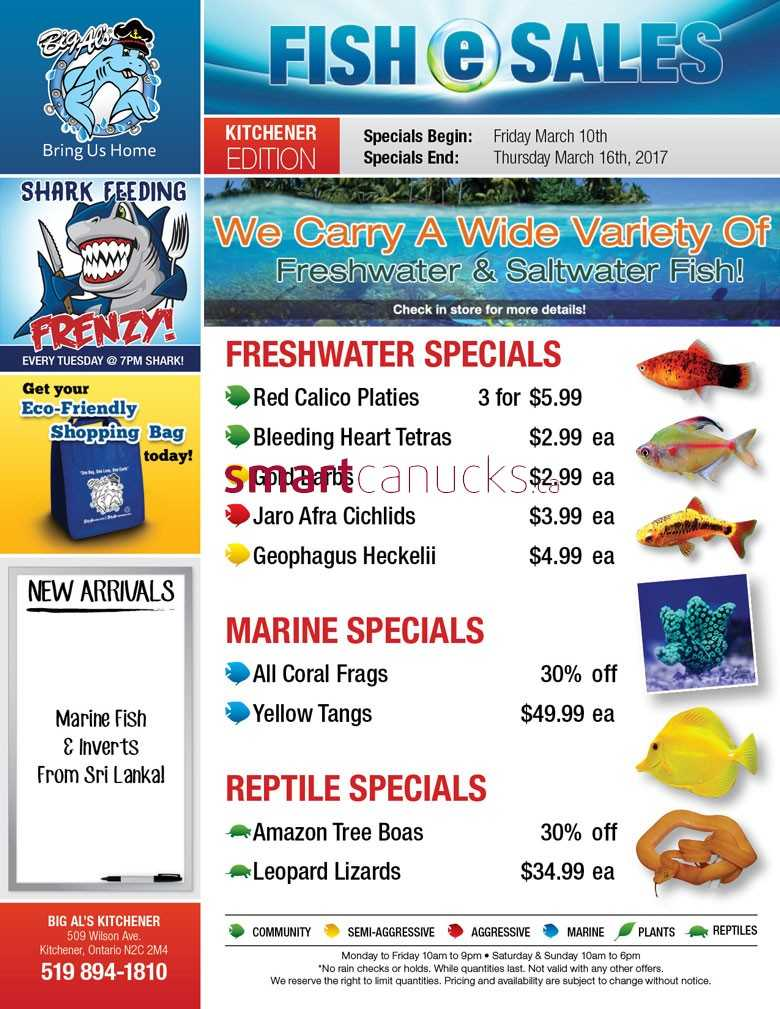 Big Al S Kitchener Specials