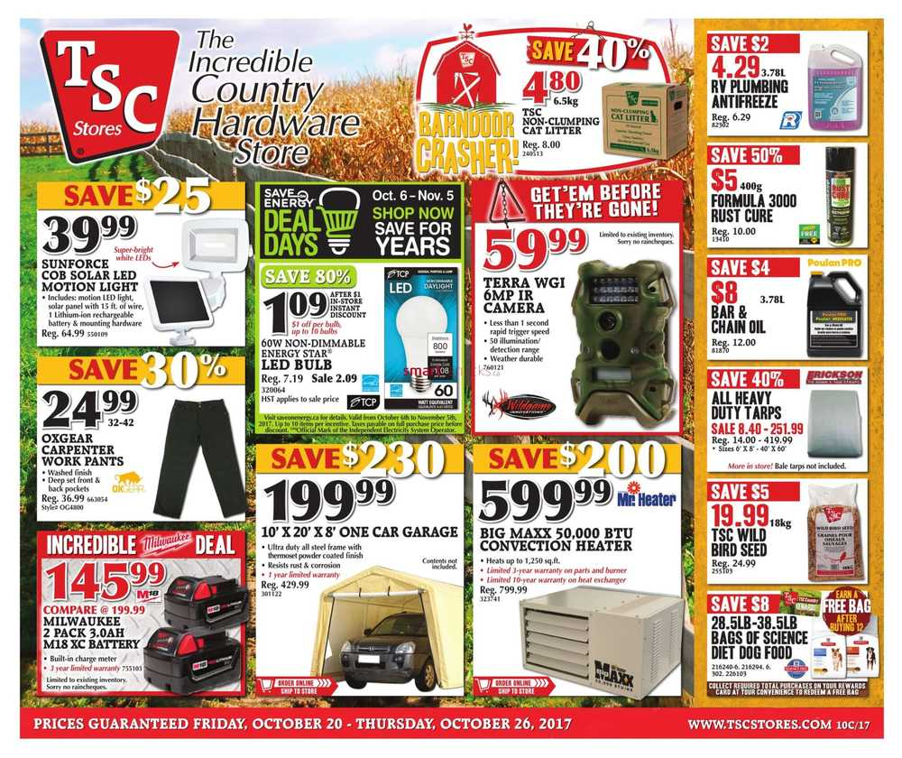 TSC Stores Flyer October 20 to 26